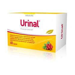 Urinal caps. N30