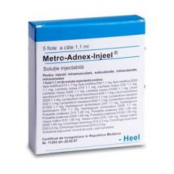 Metro-Adnex-injeel amp. 1.1ml N5
